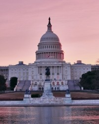 pink-capitol-1437636-m